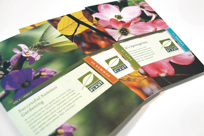 Comella Design Group | American Plant Newsletters